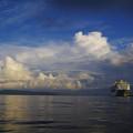 Photos: 夏の港