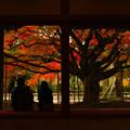写真: 秋の思ひ出