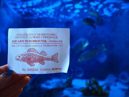 水族館のチケット