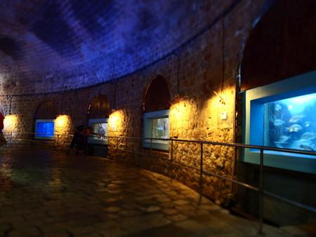城壁の中の水族館