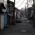 Photos: 横浜 子安浜通り