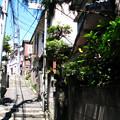 Photos: 横浜 戸部