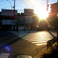 Photos: 横浜 保土ヶ谷
