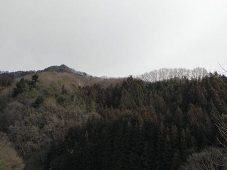2013.1.29