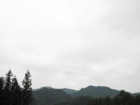 2013.8.25