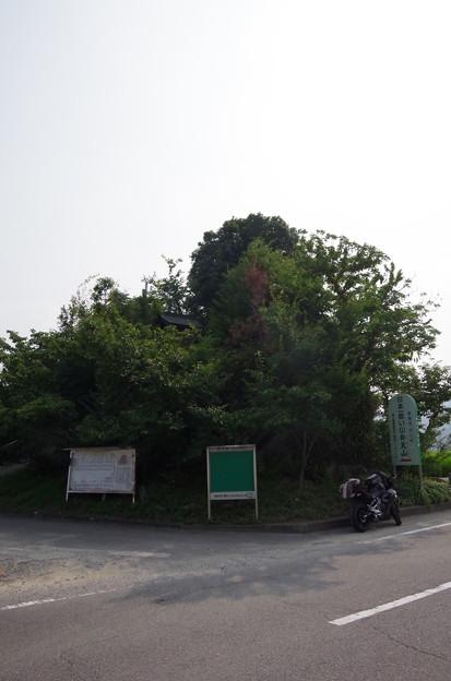 IMGP5023