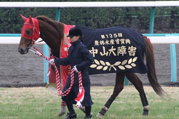 マーベラスカイザー_1(12/12/22・第135回 中山大障害)