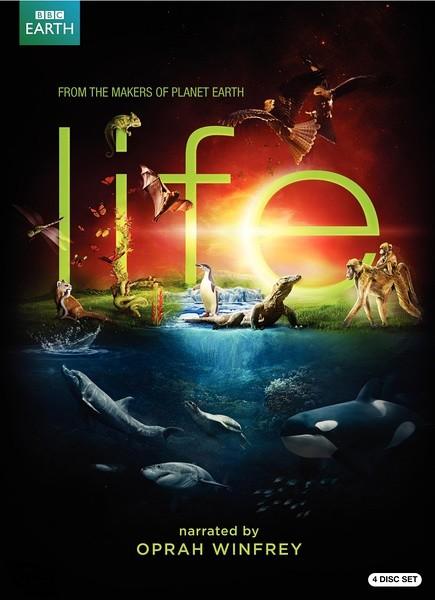 BBC 1080p高清纪录片-生命(10集全)