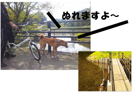 2013_04_14_2