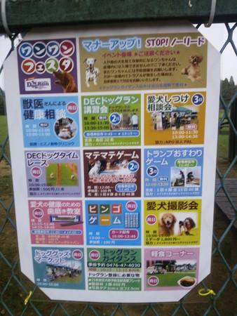 2013_10_11_5