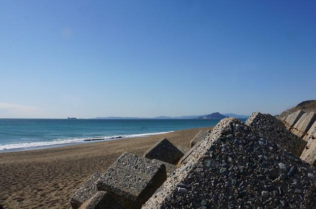 テトラの海