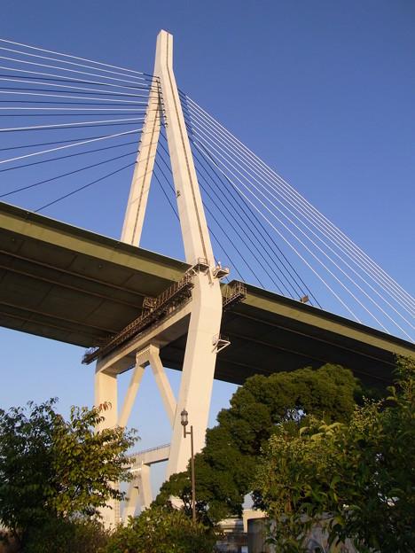 山の上の橋