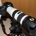 Photos: 7D+EF2×III+70-200mmf/2.8L-IS-II-USM-3