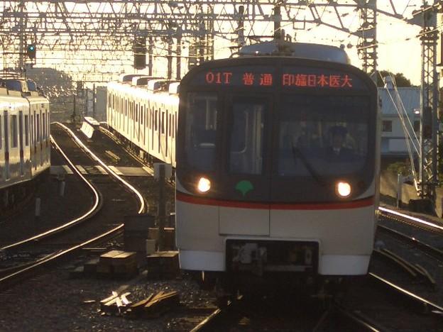 京成本線 普通印旛日本医大行 CIMG9213