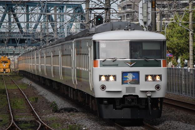 185系0番台 C7編成 湘南ライナー