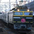 Photos: EF81 44+24系 トワイライトエクスプレス(回送)