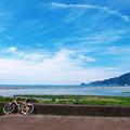 写真: 安倍川河口