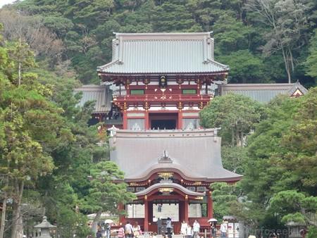 121015-八幡さま (6)