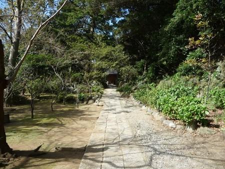 121015-葛原が丘・源氏山 (7)