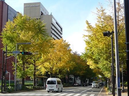 121115-紅葉 山下公園通り (30)