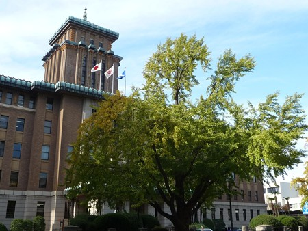 121115-紅葉 日本大通り・県庁 (17)