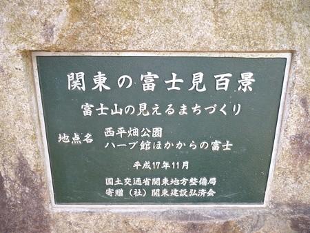 130311-松田山 河津桜 (55)