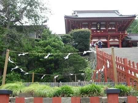 130619-八幡さま (19)