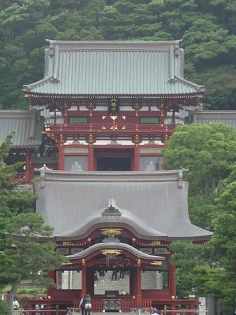130619-八幡さま (32)