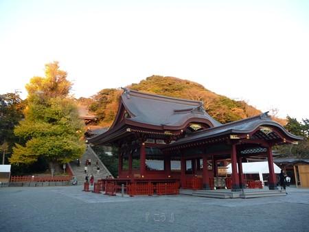 091204-八幡さま (2)