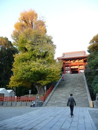 091204-八幡さま (6)