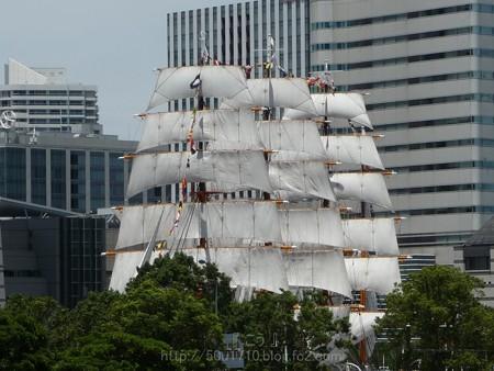 130715-帆船日本丸 総帆展帆 (2)