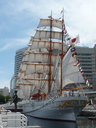 130715-帆船日本丸 総帆展帆 (31)