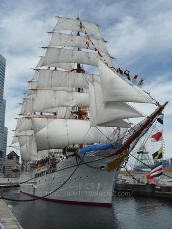 130715-帆船日本丸 総帆展帆 (48)