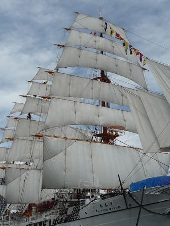 130715-帆船日本丸 総帆展帆 (50)