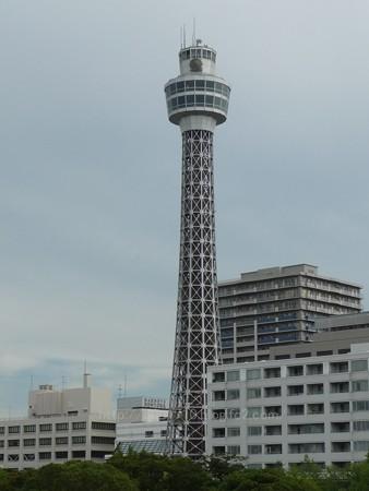 130715-氷川丸 (160)