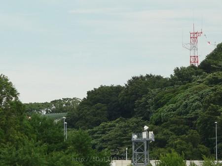 130715-氷川丸 (161)