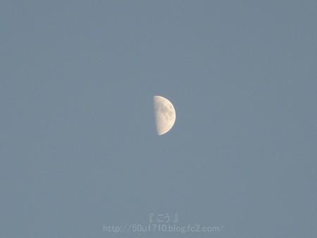 131012-お月さん 夕 (2)