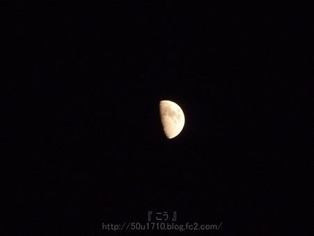 131111-お月さん (2)