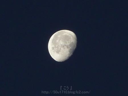 131222-お月さん(朝) (2)