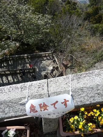 140105-久能山 (34)