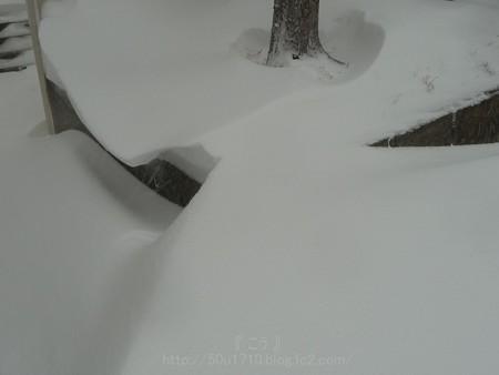 140208-雪 (33)