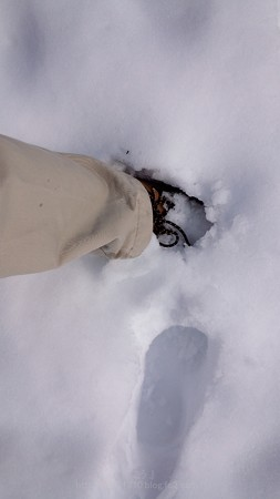 140209-雪 (18)