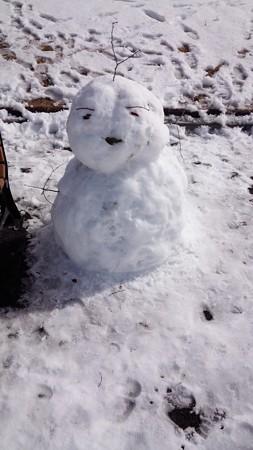 140209-雪 (19)