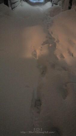 140214-雪 (29)