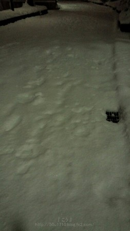140214-雪 (40)