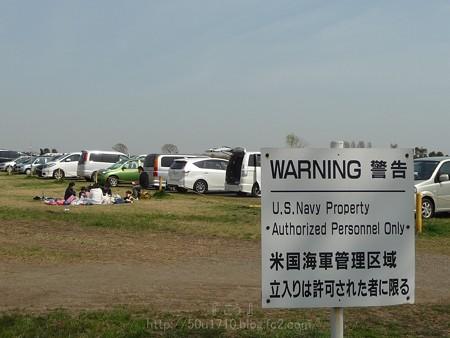 140401-桜 海軍道路 (118)