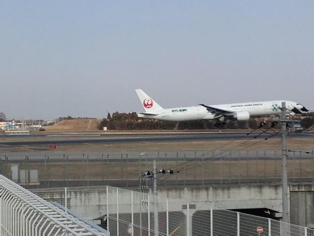 成田空港十余三東雲の丘 。... -...