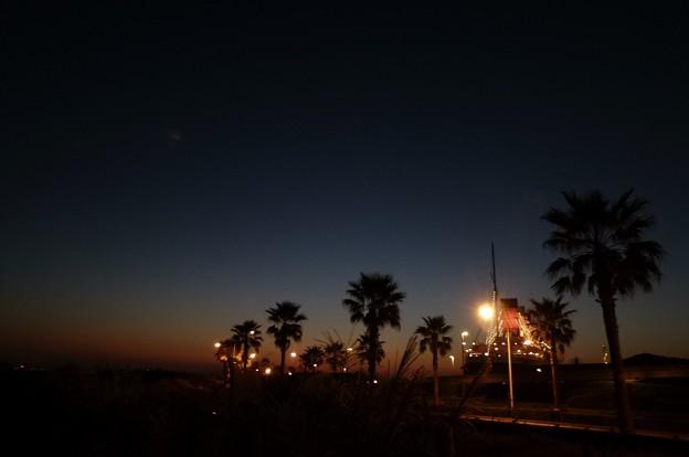 ディズニーリゾートの夕景☆