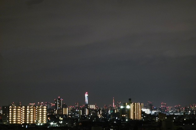 ☆゚・*:.船堀タワーと東京タワー☆゚・*:.。