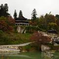 Photos: 円蔵寺_DSC_2929